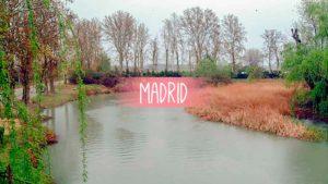 la granja en madrid